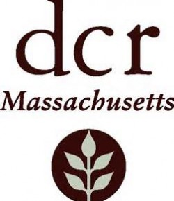 DCR announces Arbor Day poster contest for Mass. fifth-graders