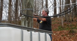 Maple syrup season remains uncertain