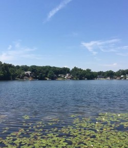 Preserve North Pond project looking for donations