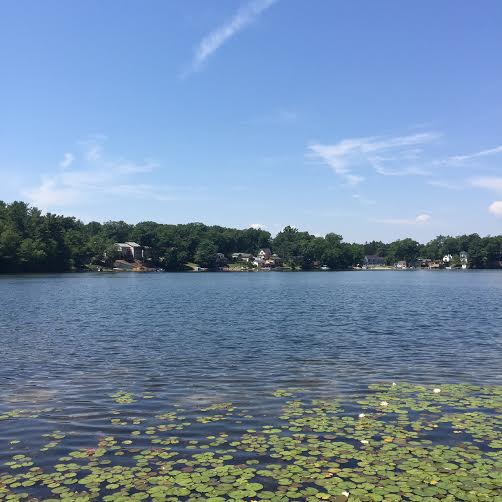 North Pond fundraiser to feature live entertainment