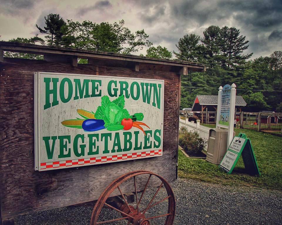 Granville Farmer's Market celebrates National Farmer's Market week