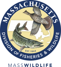 Massachusetts Division of Fisheries and Wildlife (MassWildlife)