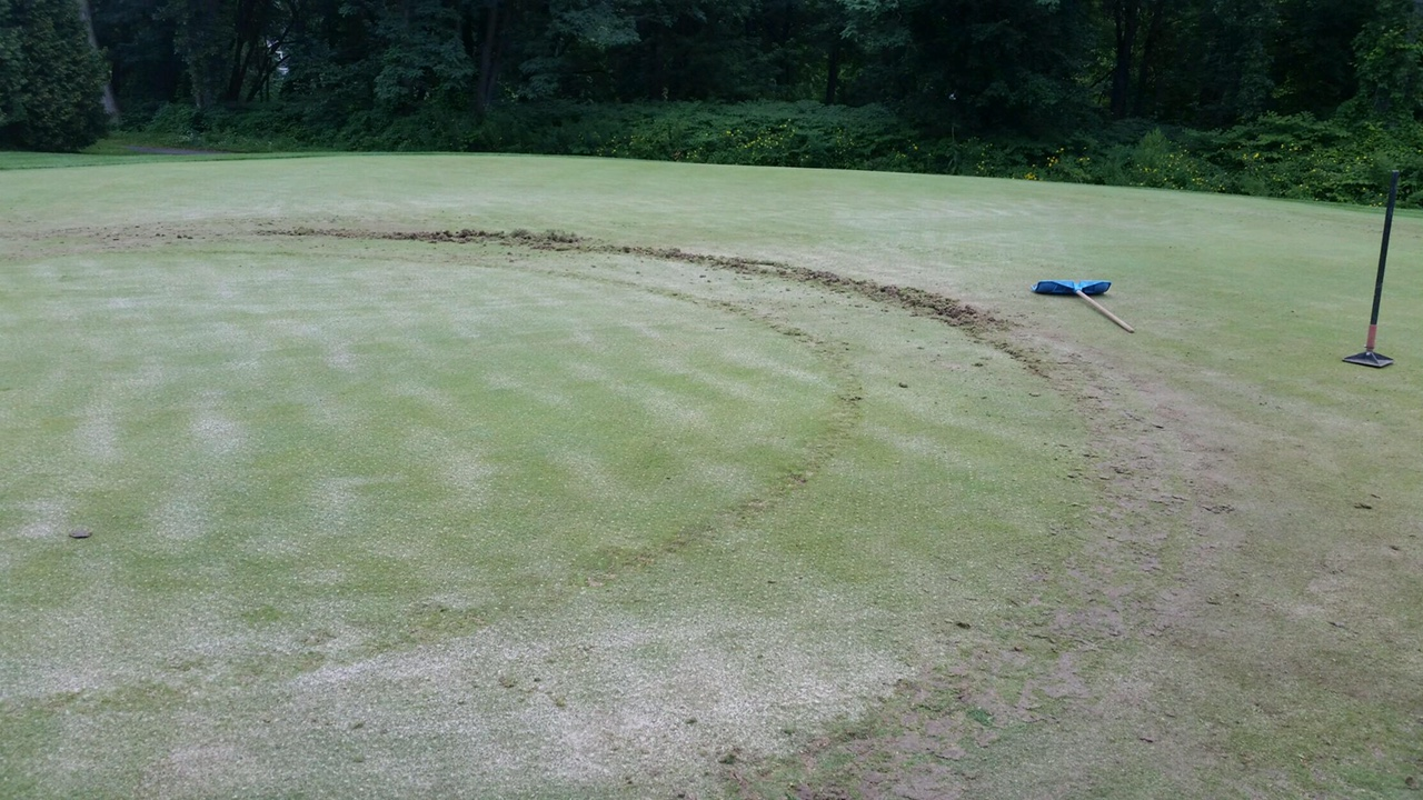 Multiple greens damaged on Tekoa Golf Course
